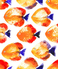 Vector seamless pattern with watercolor discus fish