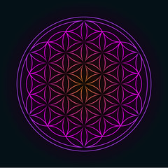 Glowing Geometrical Ornament  - Flower of Life