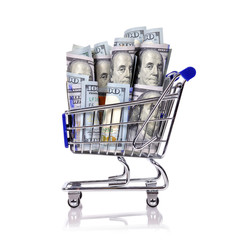 shopping cart with dollar