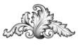 Vintage baroque foliage scroll ornament vector - 76721632