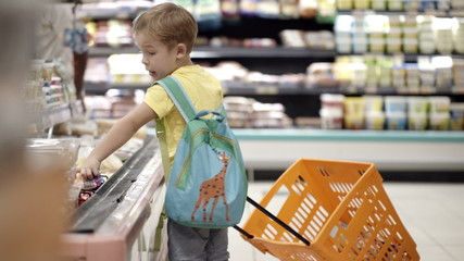 Boy putting products into shopping cart