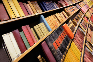 Classic books in library