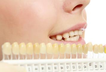 Comparing teeth