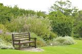 Bench in Kirstenbosch poster