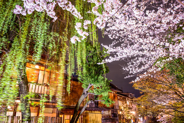 Spring in Kyoto, Japan