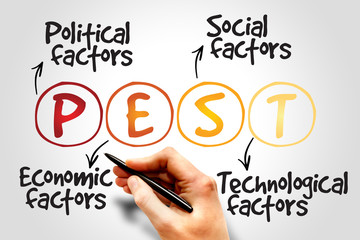 PEST Analysis Strategy for Business / Presentation / Website