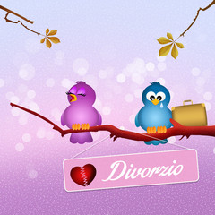 birds divorced