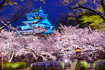 Osaka Castle During Spring Season
