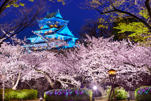 In de dag Japan Osaka Castle During Spring Season