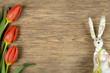 Osterhase Holzhintergrund und Tulpen