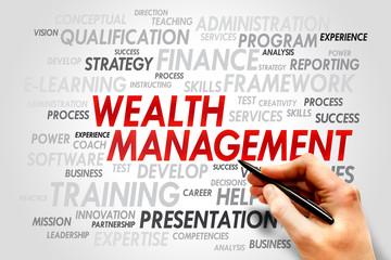 Wealth Management word cloud, business concept