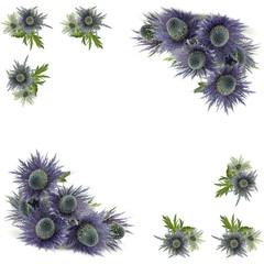 frame of violet flowers