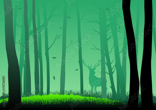 Papiers peints Bambou Silhouette illustration of woods