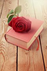 Rose flower on book over wooden background