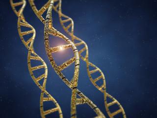 Genetically modified DNA molecules , GMO