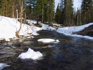 Freezing river in winter forest
