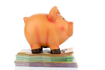 Sparschwein auf Banknoten