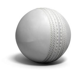 Cricket Ball White
