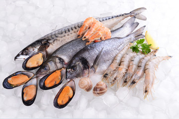 Fresh fish and other seafood on ice