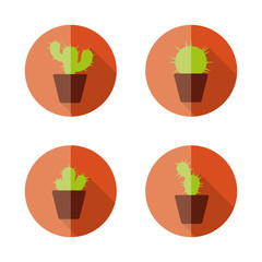 cactus flat icons
