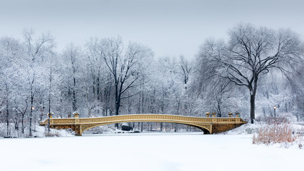 Dreamy landscape with the Bow Bridge in Central Park, NYC