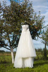 bridesmaid dress on a tree branch