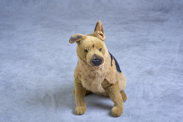 Mannequin/Padded Toy Bear/Padded Toy Dog