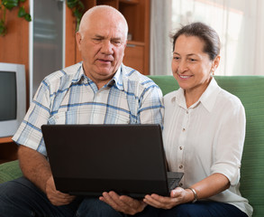 Happy mature couple  with computer