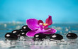 Spa still life with pink orchid and black zen stone