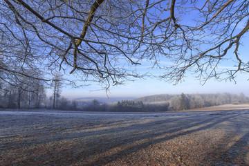 paysage campagne en hiver