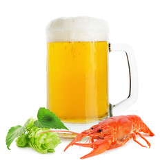 jug of beer with lobster and green hops isolated on the white ba