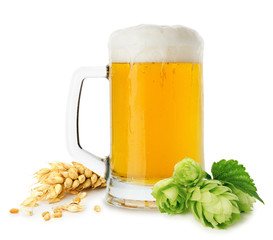 jug of beer with wheat and hops isolated on the white background