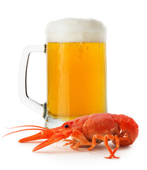 jug of beer with lobster isolated on the white background