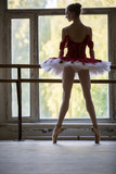 Elegant young ballerina standing near a large window in a dance