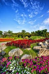 Garden in Suan Luang Rama 9 public park