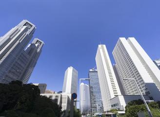 快晴青空と緑 新宿高層ビル街を見上げる