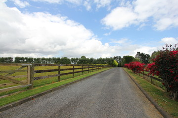 Driveway to the farm house