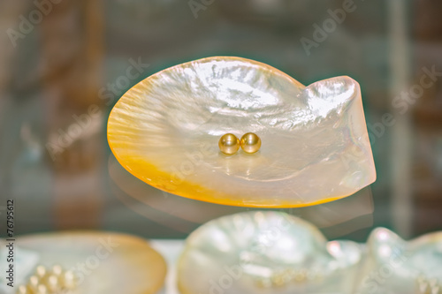 Pearl shell - 76795612