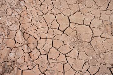 Terra arida