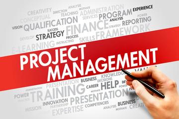 Project Management word cloud, business concept