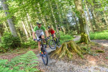 Eine Tour mit dem Mountainbike im Wald