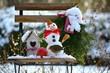 Leinwanddruck Bild - Garten im Winter