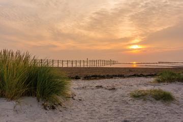 Sonnenaufgang auf Darss