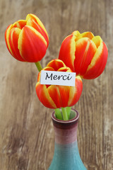 Merci card (thank you in French) with red and yellow tulips
