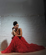 flamenco in rot