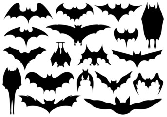Set of different bats isolated on white
