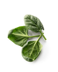 Spinach leaves, on white