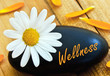 canvas print picture - Wellness
