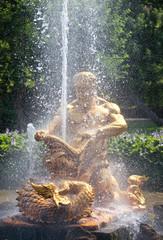 Petrodvorets. Fountain