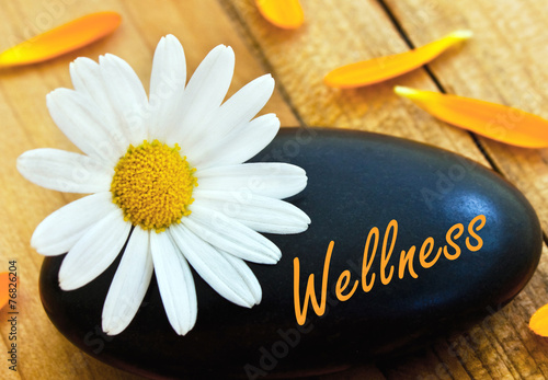 canvas print picture Wellness